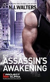 Assassin's Awakening excerpt