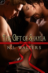 The Gift of Shayla excerpt