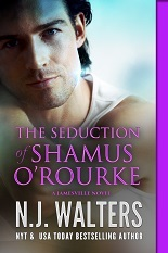 The Seduction of Shamus O'Rourke excerpt